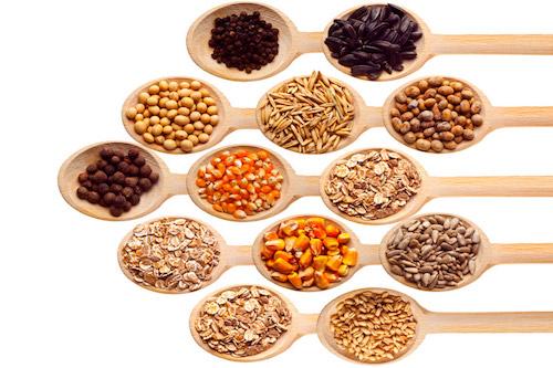 Nutrición Natural y Energética