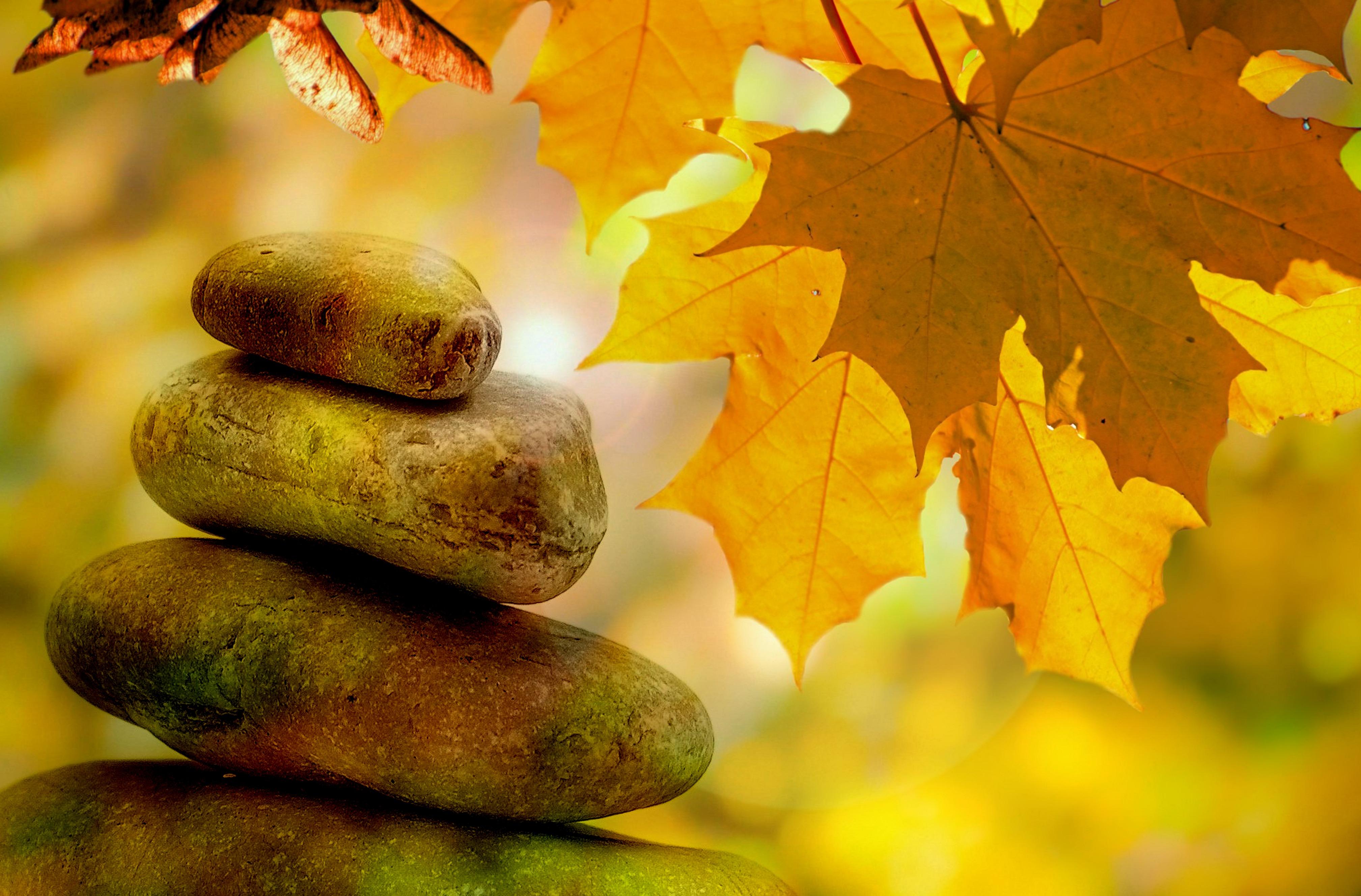 meditation-264508