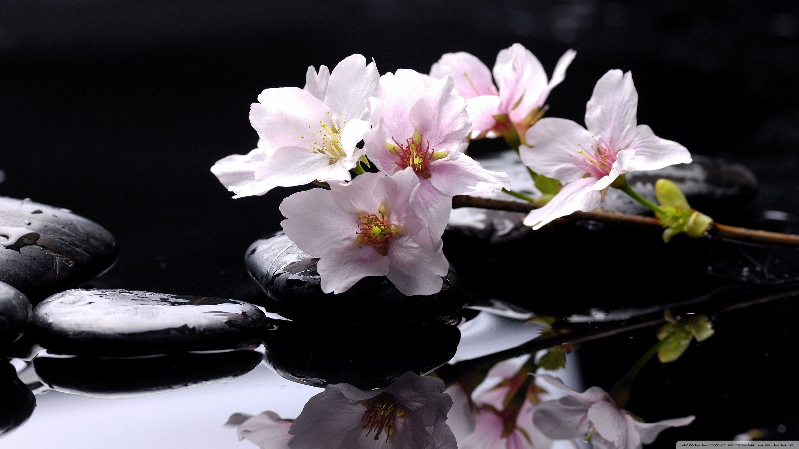 zen_stones_background_2-wallpaper-2560x1440