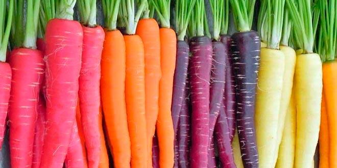Resultado de imagen de pastanagues